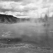 Upper Terrace - Mammoth Terrace Hot Springs - Yellowstone National Park - Black & White