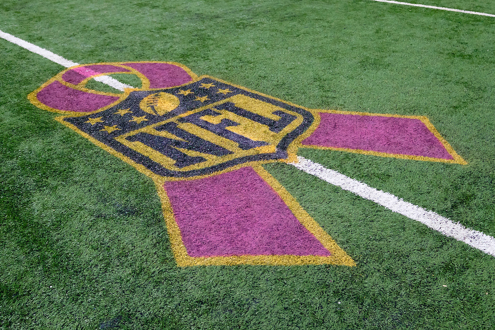 General view of Breast Cancer Awareness logo on the field prior to between the Detroit Lions and the Arizona Cardinals an NFL football game at Ford Field in Detroit, Sunday, Oct. 11, 2015. (AP Photo/Rick Osentoski)
