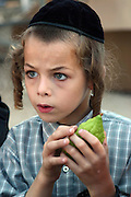 Israel, Jerusalem, Me'a She'arim, young Orthodox Jewish boy holding onto his etrog. Of the many symbols associated with Sukkot the most important are the Four Species. For any of the 4 species to be used for the religious ritual they must be up to speck.