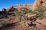 UT00119-00...UTAH - North and South Window in the windows section of Arches National Park.