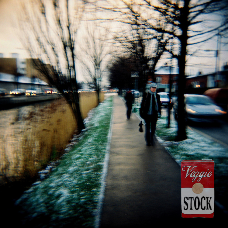 Snow in along The Grand Canal, Dublin, Ireland, February, 2009.