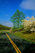 Image of the Blue Ridge Parkway in the spring, North Carolina and Virginia, east coast