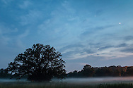 Goshen, New York - Ground fog at twilight at the former Good Time Park harness racing track on June 12, 2015.