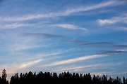 Streaks of thin, high cirrus clouds fill the sky over Bothell, Washington.