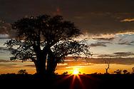 Sunset over the Okavango Delta, Botswana, Africa