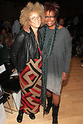 6 September 2013- New York, NY: (L-R) Writer/Image Activist Michaela Angela Davis and Media personality Harriett Cole attends Harlem Fashion Row 2013 Spring Presentation held at Jazz at Lincoln Center on September 6, 2013 in New York City. ©Terrence Jennings