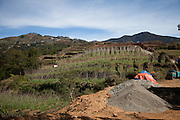 On the slopes of Mt Pulag National Park, ongoing development of a road system accompanies the proliferation of vegetable farms.