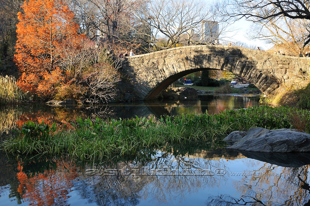 Reflection of Gapstow Bridge
