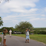 Volunteers counting hawks at Hazel Bazemore Park outside Corpus Christi, Texas.