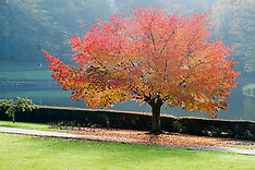 Crookes Valley Park