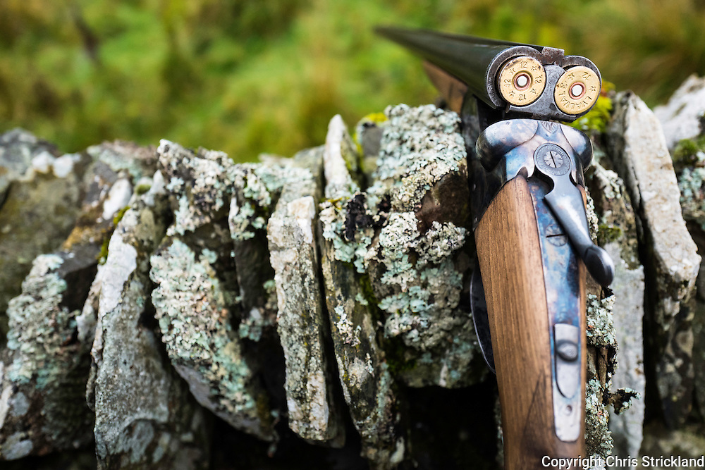 A loaded twelve bore shotgun rests on a dry stone wall.