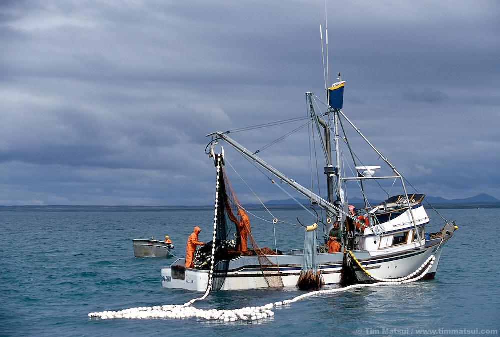 Tim matsui visual journalist and filmmaker for Purse seine fishing