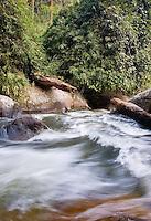 River torrent flowing through montane rainforest, Doi Inthanon National Park, Chiang Mai province, Thailand