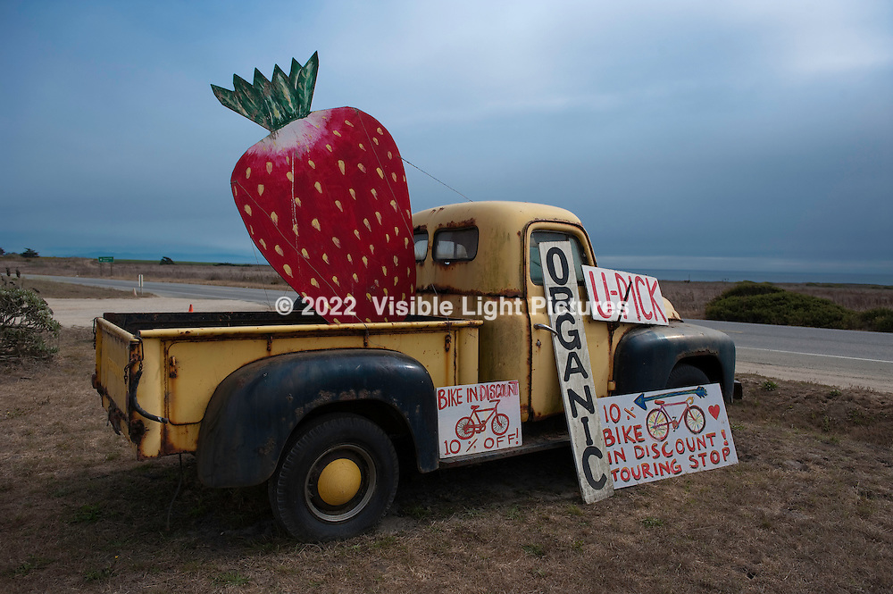 An old black and yellow pick-up truck by the road with signs for a farm stand.