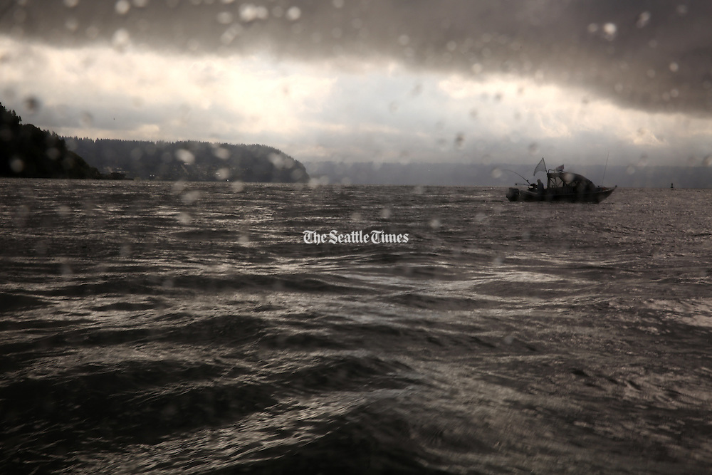 A fisherman cruises on Puget Sound near Whidbey Island during a moody, misty morning.<br />