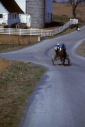 Young amish man drives buggy up Lancaster county road.