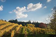 Oregon - Chehalem