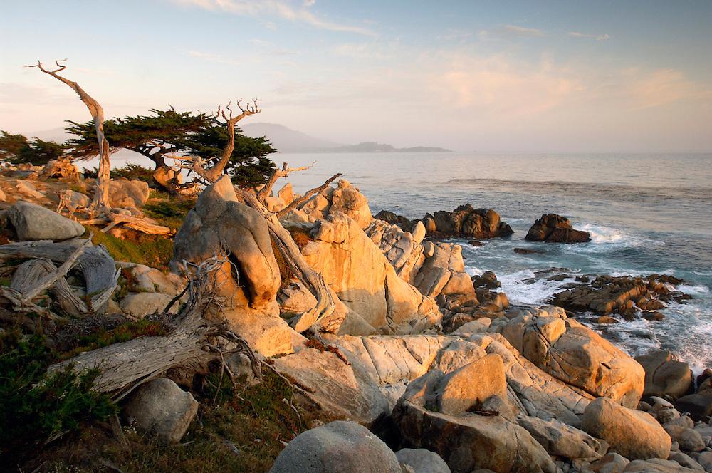 Pesadero Point, Pebble Beach, 17 Mile drive, Monterey Peninsula, Monterey, California, United States of America