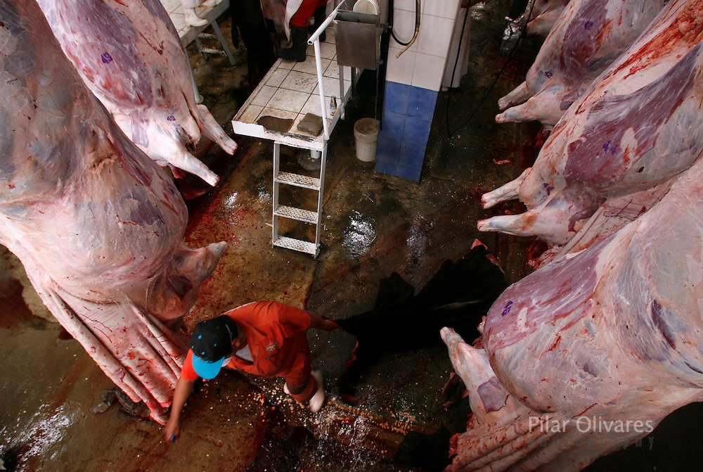 A worker skins a slaughtered dairy cow at a slaughterhouse in Lima October 25, 2007. Peruvian ranchers killed about 80 of their dairy cows as a protest against milk companies that pay low prices for milk.