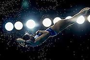 2016 Dubai Diving FINA/NVC World Series
