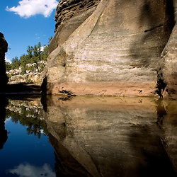 Milk Ranch Canyon full water in the spring in the Zuni Mountains of western New Mexico.