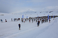 Start of the northernmost ski marathon in the world outside Longyearbyen on Spitsbergen island in April; Svalbard, Norway.