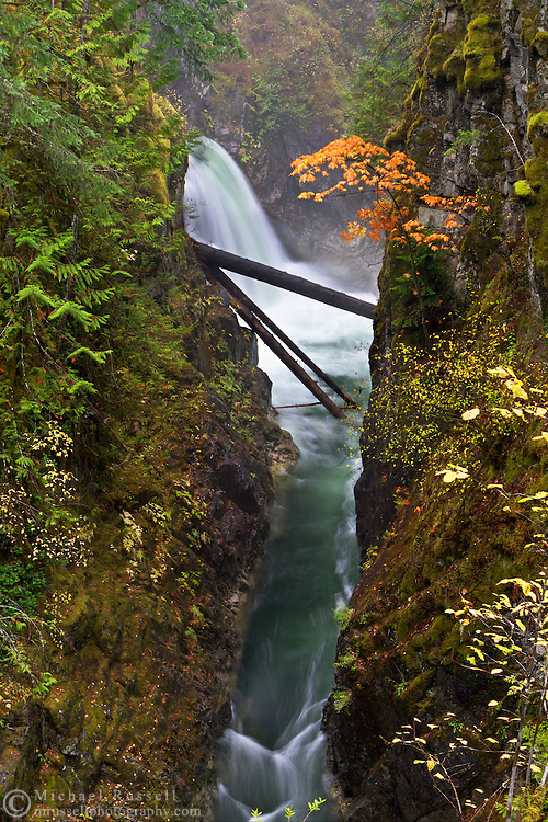 Fall color at Upper Little Qualicum Falls at Little Qualicum Falls Provincial Park in the Nanaimo Regional District, British Columbia, Canada