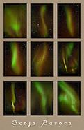 Aurora panel, Senja, Norway
