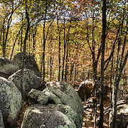 Indian Rocks, fall foliage color in mid October. Walk 0.3 miles to the impressive boulders of Indian Rocks from Indian Gap Parking Area (Milepost 47.5, elevation 2098 feet) on Blue Ridge Parkway, in Virginia, in the Blue Ridge Mountains (a subset of the Appalachian Mountains), USA. The scenic 469-mile Blue Ridge Parkway was built 1935-1987 to aesthetically connect Shenandoah National Park (in Virginia) with Great Smoky Mountains National Park in North Carolina, following crestlines and the Appalachian Trail. This panorama was stitched from 13 overlapping photos.