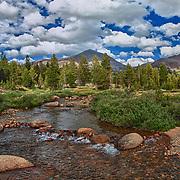 Upper Tuolumne Meadows Stream - Yosemite - HDR