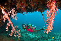 The Philippines offers colorful scuba diving, friendly people and great rural landscapes.