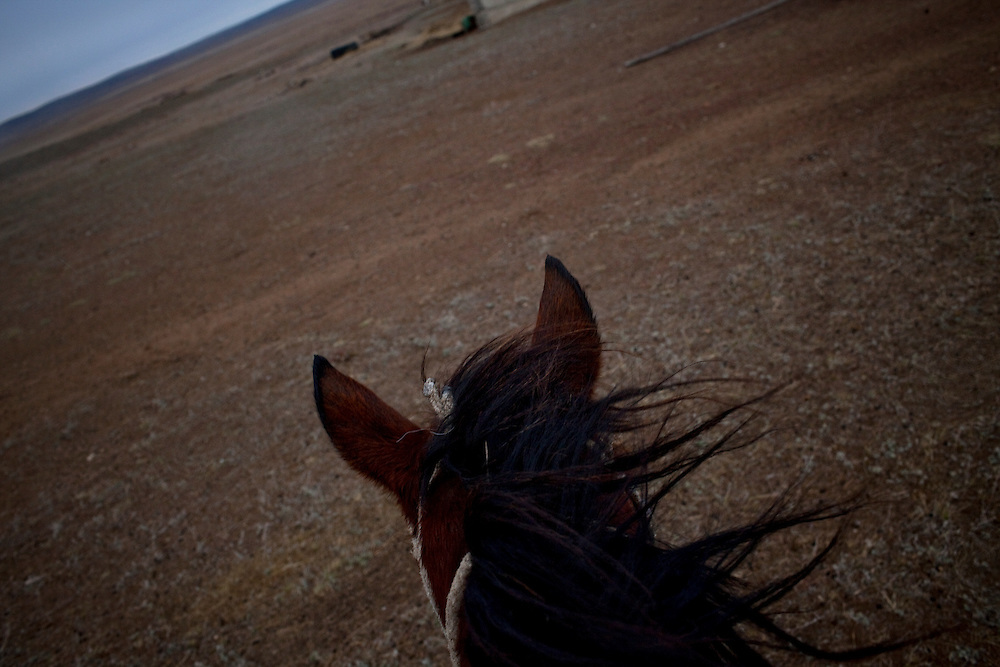 CREDIT: DOMINIC BRACCO II..SLUG:PRJ/KAZAKHSTAN SHEEP HERDERS..DATE:10/22/2009..CAPTION:View from the back of a horse near Semey, Kazakhstan. The herders live near an atomic lake which was made during the 1970s as part of an experiment by the USSR to create lakes from atomic bombs. The lake is in an area known as The Polygon, a test site for more than 400 of the Soviet Union's nuclear weapons.