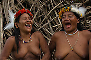 Huaorani women, Awame Gomoke &amp; Dete Iteka both wearing crowns topped with Harpy Eagle feather<br /> Bameno Community. Yasuni National Park.<br /> Amazon rainforest, ECUADOR.  South America<br /> This Indian tribe were basically uncontacted until 1956 when missionaries from the Summer Institute of Linguistics made contact with them. However there are still some groups from the tribe that remain uncontacted.  They are known as the Tagaeri &amp; Taromenane. Traditionally these Indians were very hostile and killed many people who tried to enter into their territory. Their territory is in the Yasuni National Park which is now also being exploited for oil.