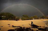 A male sea lion rested on Playa Mann as a rainbow formed overhead on San Cristobal island on Galapagos on 7/7/09.