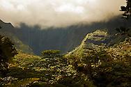 Jurassic Park, Kauai Hawaii