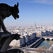 Paris Skyline / Paris, France