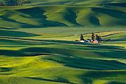 Palouse farm and wheat fields from Steptoe Butte, Washington.