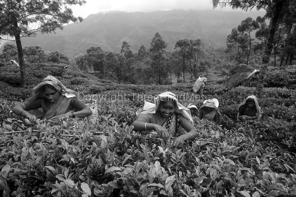 Sri Lanka. <br />