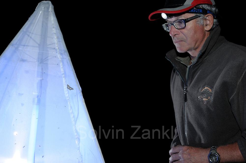 Herbert Seelaus (Experte für Lepidoptera) Nationalpark Hohe Tauern, Österreich.