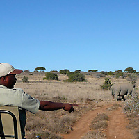 Africa, South Africa, Kwandwe. Spotter and Rhino at Kwandwe.