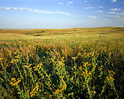AA02175-02...NORTH DAKOTA - Open prairie in the North Unit of Theodore Roosevelt National Park.