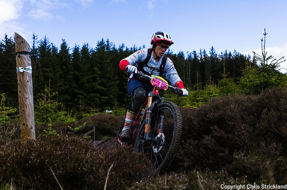 Glentress, Peebles, Scotland, UK. 31st May 2015. Tracy Mosley of Trek Factory Racing won the Enduro World Series Round 3 which took place on the iconic 7Stanes trails during Tweedlove Festival.