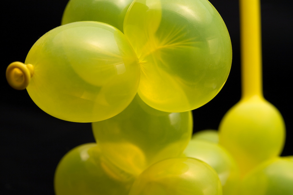 Close up of yellow balloon mouse with black background.