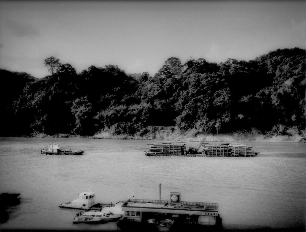Tub boat pulls barge filled with timber downstream past Kapit, Upper Rejang River, Sarawak, Malaysian Borneo.