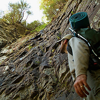South Carolina's Mountain Bridge Wilderness is a diverse landscape full of natural diversity and scenic beauty. A hiker observes the Cathedral; a sheer cliff along the Naturaland Trust Trail, which is close to Raven Cliff Falls.