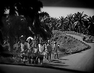 Batek Negrito women and children walk along the paved highway that leads through massive, older oil plantations owned by oil palm giant, FELDA Global, that have occupied what used to be their ancestral homeland.  Near Kuala Koh, Kelantan, Malaysia.