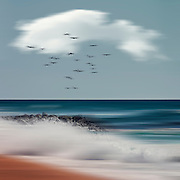 Abstract seascape<br /> Contis-Plage, France<br /> Wave breaking on  beach