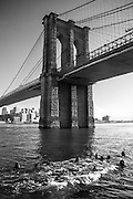 Views of Brooklyn Bridge, New York City