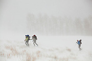 Backcountry skiers Sarah Conlin, Meaghan Daly and Emily Miller battle fierce wind and blowing snow in Uncompahgre National Forest, Colorado.