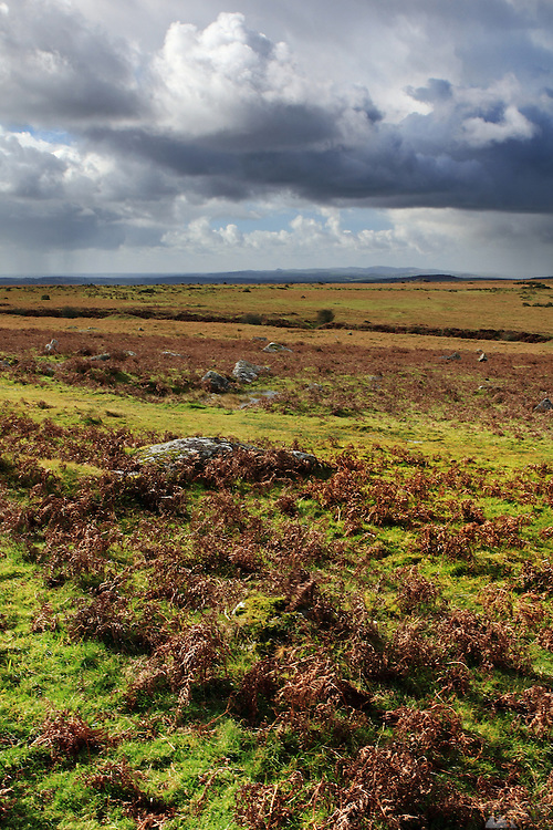 Bodmin Moor, in Cornwall, near The Minions